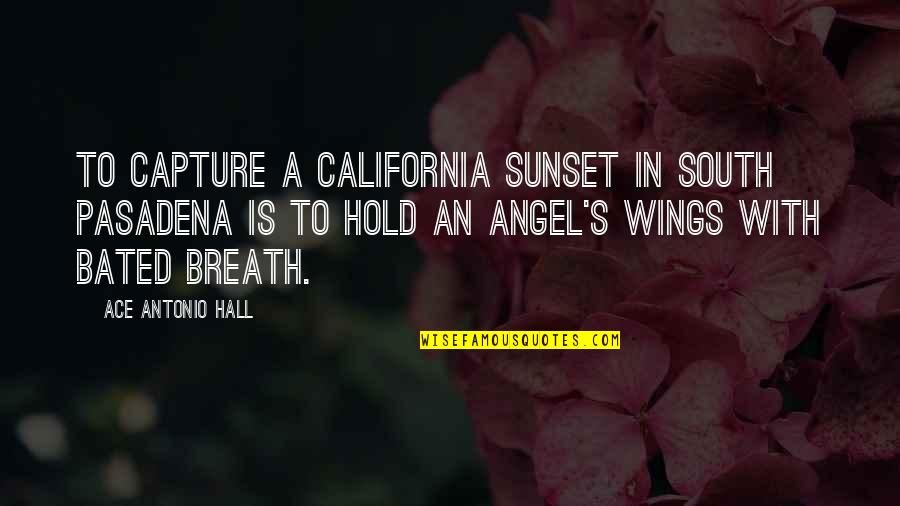 California Quotes By Ace Antonio Hall: To capture a California sunset in South Pasadena