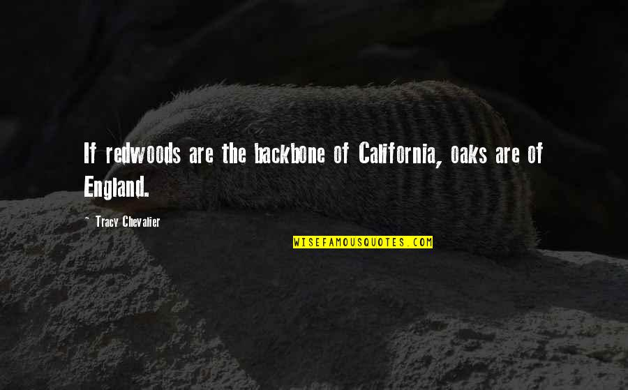 California Quotes By Tracy Chevalier: If redwoods are the backbone of California, oaks