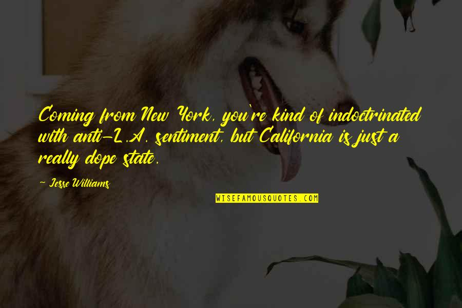 California State Quotes By Jesse Williams: Coming from New York, you're kind of indoctrinated