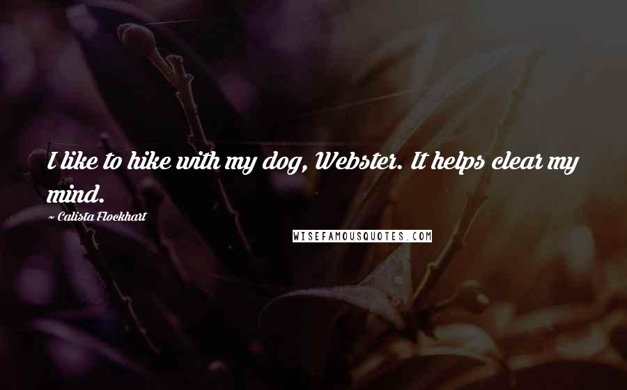 Calista Flockhart quotes: I like to hike with my dog, Webster. It helps clear my mind.