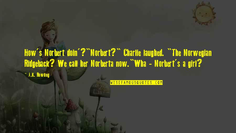 "Call Girl Quotes By J.K. Rowling: How's Norbert doin'?""Norbert?"" Charlie laughed. ""The Norwegian Ridgeback?"