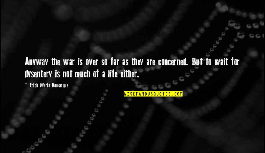 Camaraderie In War Quotes By Erich Maria Remarque: Anyway the war is over so far as