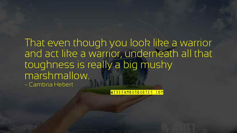 Cambria Quotes By Cambria Hebert: That even though you look like a warrior