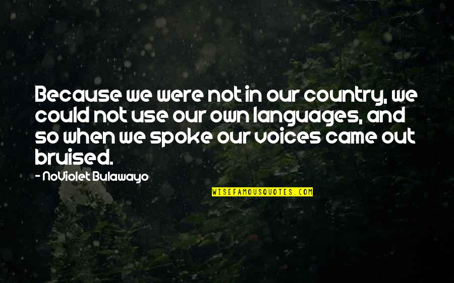 Came Quotes By NoViolet Bulawayo: Because we were not in our country, we
