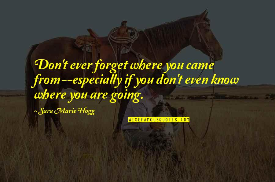Came Quotes By Sara Marie Hogg: Don't ever forget where you came from--especially if