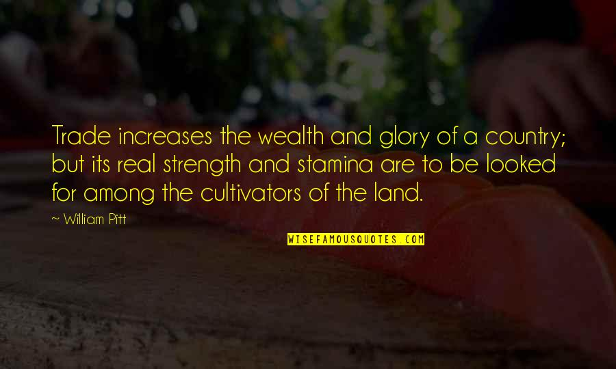 Camera Picture Quotes By William Pitt: Trade increases the wealth and glory of a