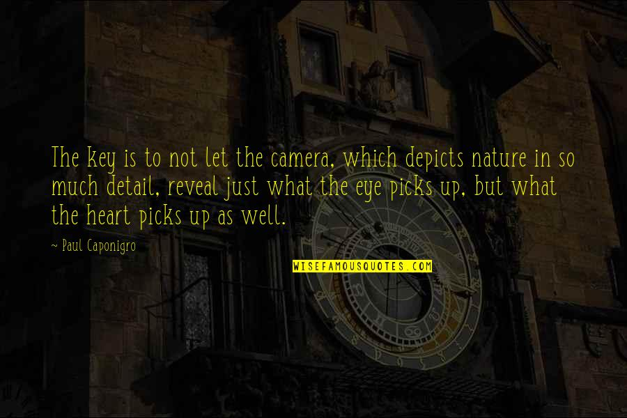 Camera Quotes By Paul Caponigro: The key is to not let the camera,