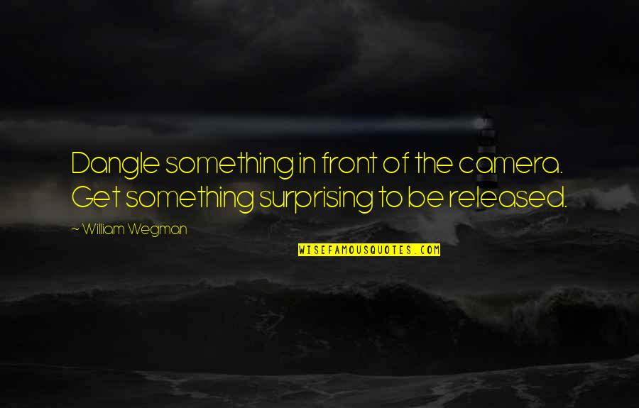 Camera Quotes By William Wegman: Dangle something in front of the camera. Get