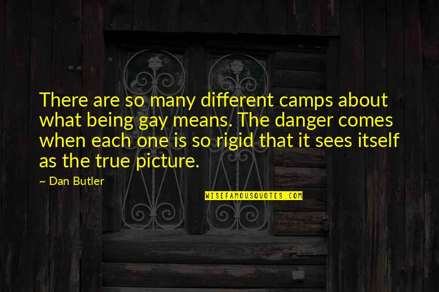 Camps Quotes By Dan Butler: There are so many different camps about what