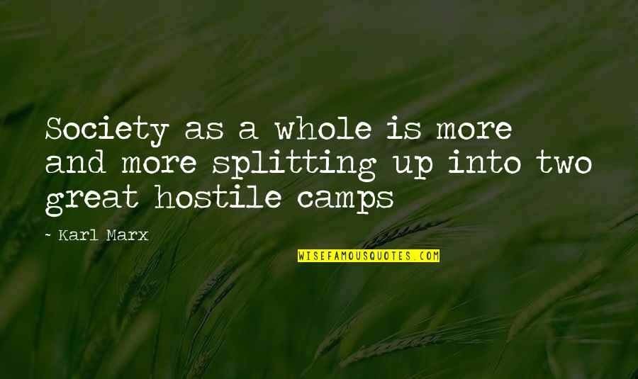 Camps Quotes By Karl Marx: Society as a whole is more and more