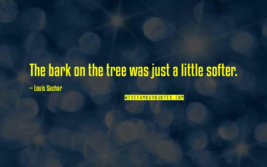 Camps Quotes By Louis Sachar: The bark on the tree was just a