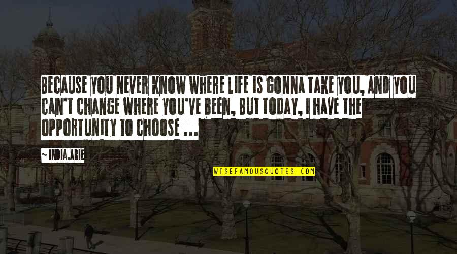 Can I Change Quotes By India.Arie: Because you never know where life is gonna