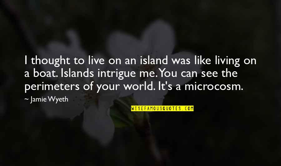 Can U See Me Quotes By Jamie Wyeth: I thought to live on an island was