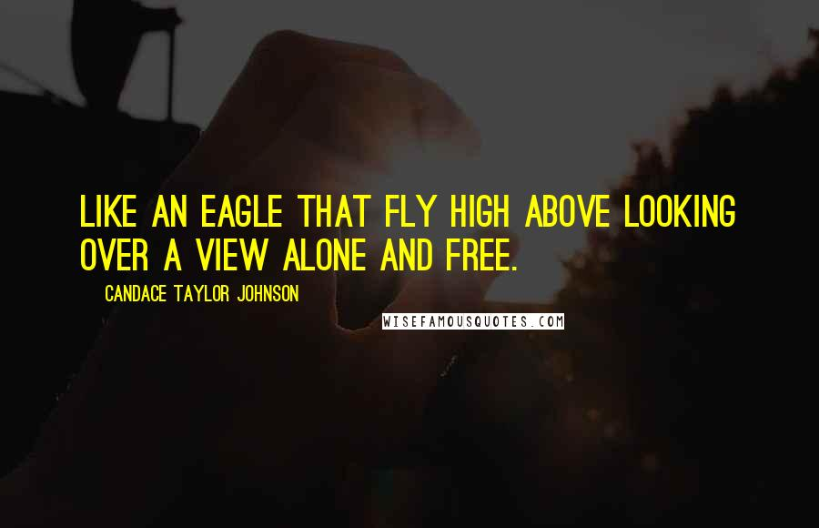 Candace Taylor Johnson quotes: Like An Eagle That Fly High Above Looking Over A View Alone And Free.