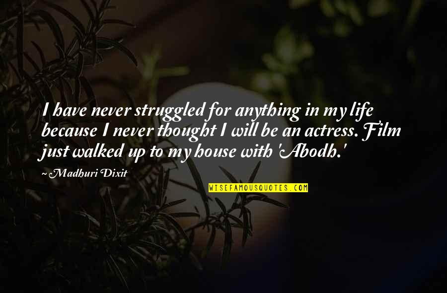 Candles And Teachers Quotes By Madhuri Dixit: I have never struggled for anything in my