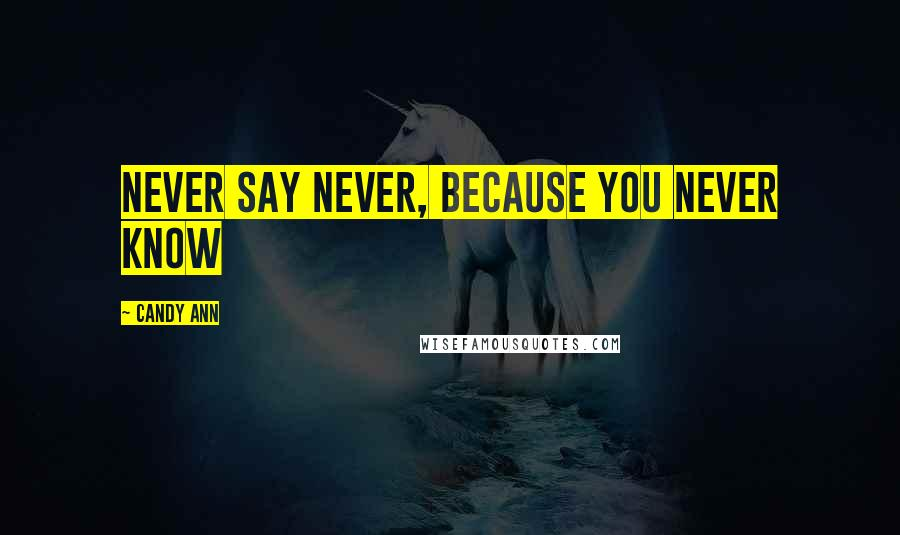 Candy Ann quotes: Never say never, because you never know