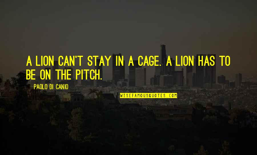 Canio Quotes By Paolo Di Canio: A lion can't stay in a cage. A