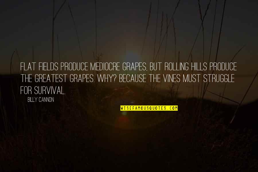 Cannon Quotes By Billy Cannon: Flat fields produce mediocre grapes, but rolling hills