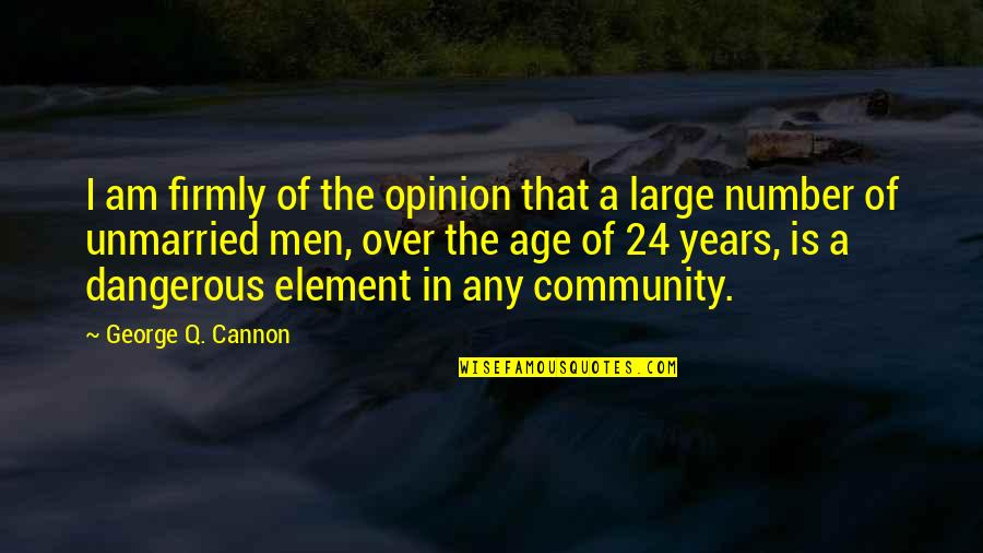 Cannon Quotes By George Q. Cannon: I am firmly of the opinion that a