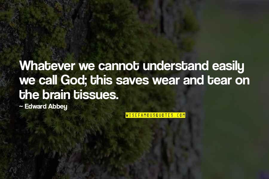 Cannot Understand Quotes By Edward Abbey: Whatever we cannot understand easily we call God;