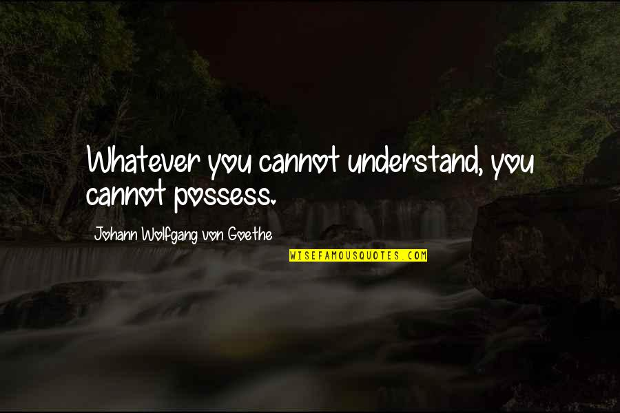 Cannot Understand Quotes By Johann Wolfgang Von Goethe: Whatever you cannot understand, you cannot possess.