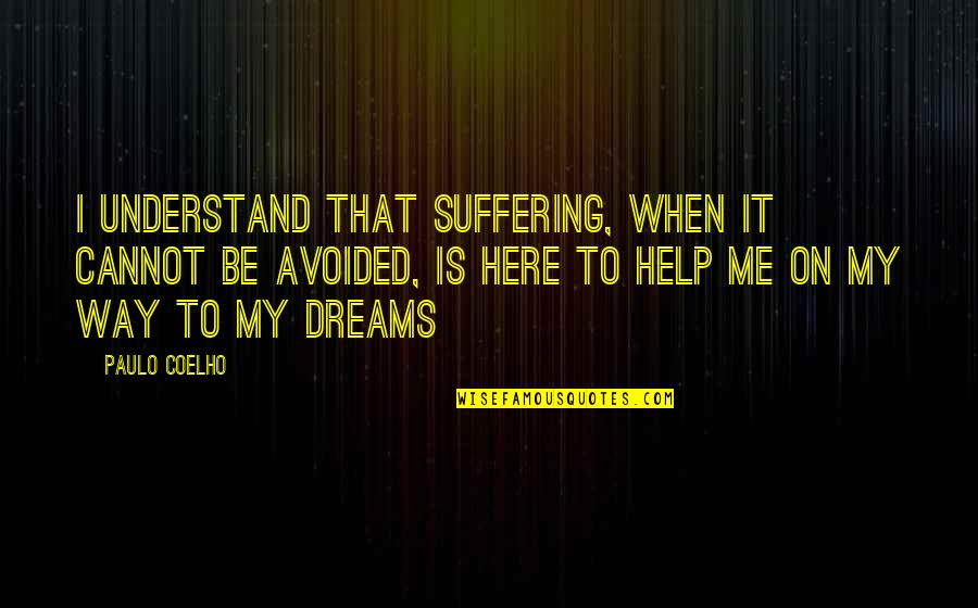 Cannot Understand Quotes By Paulo Coelho: I understand that suffering, when it cannot be