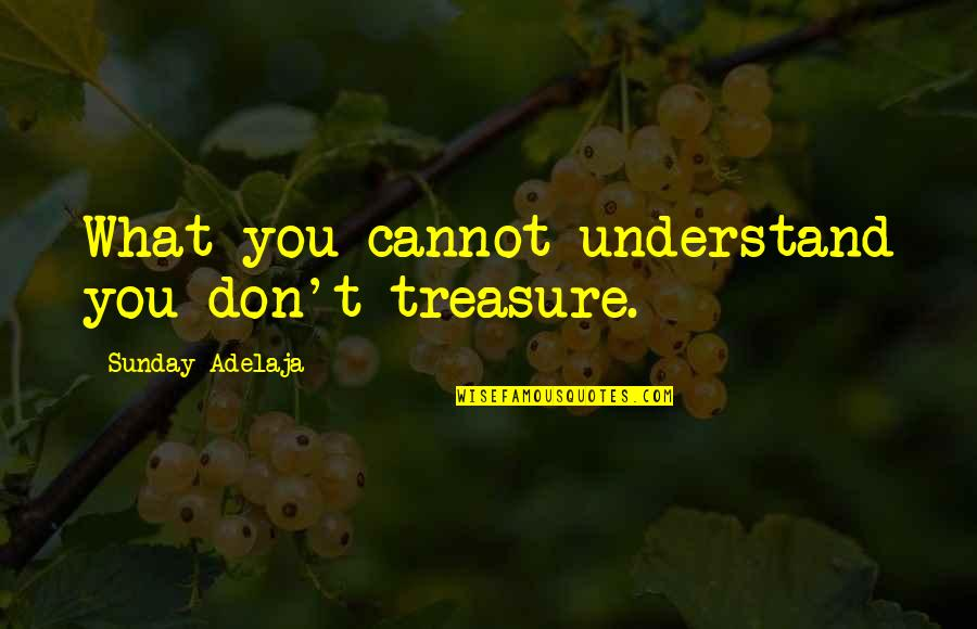 Cannot Understand Quotes By Sunday Adelaja: What you cannot understand you don't treasure.