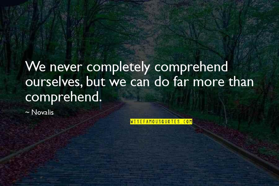 Can't Comprehend Quotes By Novalis: We never completely comprehend ourselves, but we can