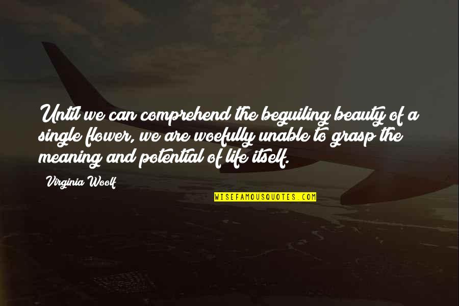 Can't Comprehend Quotes By Virginia Woolf: Until we can comprehend the beguiling beauty of
