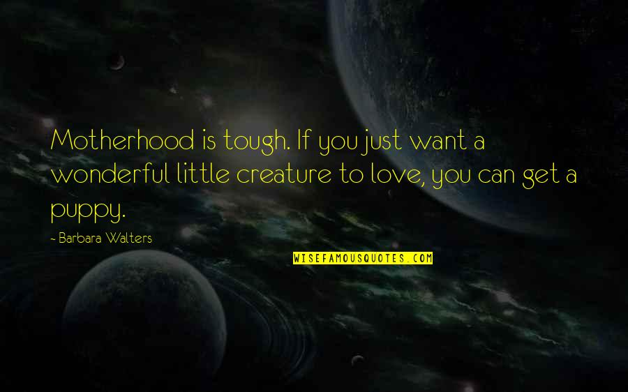 Can't Get Over Love Quotes By Barbara Walters: Motherhood is tough. If you just want a