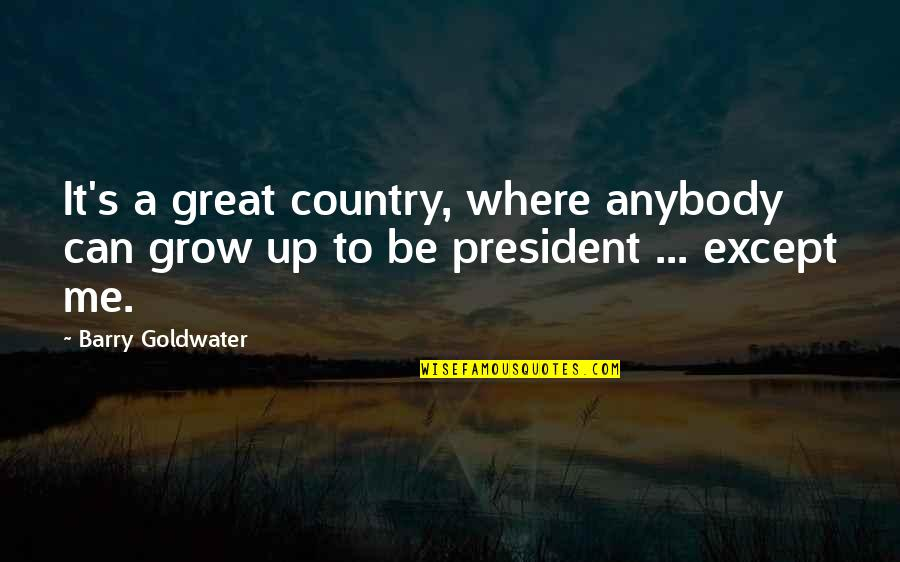 Can't Grow Up Quotes By Barry Goldwater: It's a great country, where anybody can grow