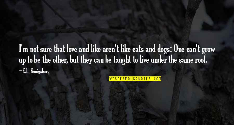 Can't Grow Up Quotes By E.L. Konigsburg: I'm not sure that love and like aren't