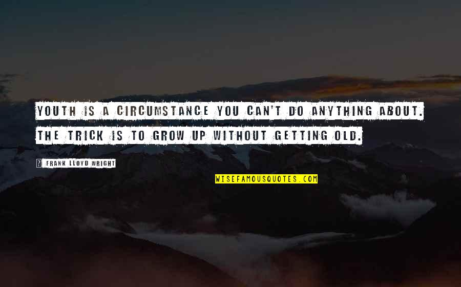 Can't Grow Up Quotes By Frank Lloyd Wright: Youth is a circumstance you can't do anything