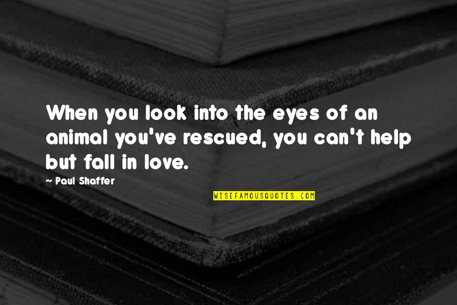 Can't Help You Love Quotes By Paul Shaffer: When you look into the eyes of an