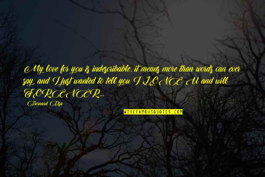 Can't Say I Love You Quotes By Bernard Dsa: My love for you is indescribable, it means