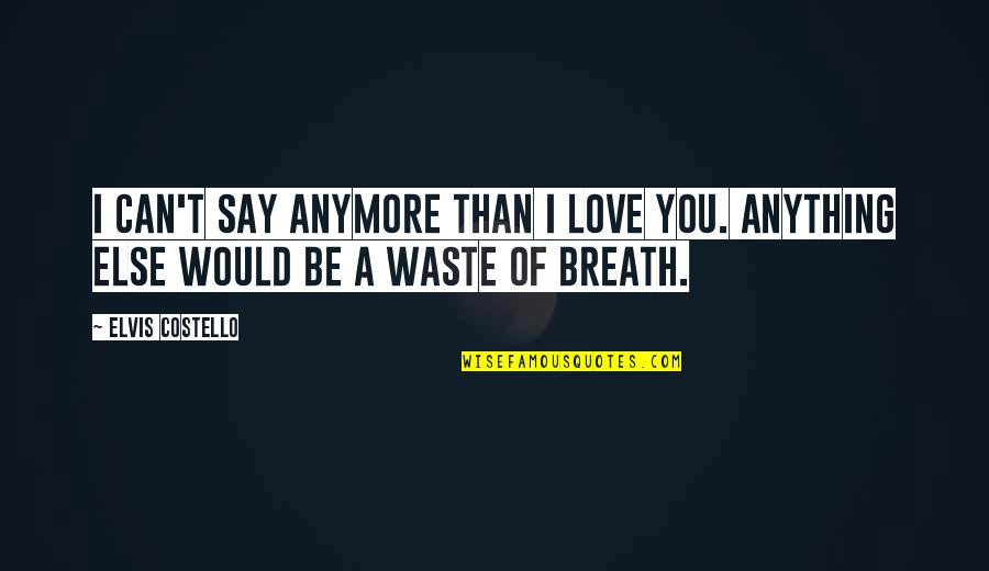 Can't Say I Love You Quotes By Elvis Costello: I can't say anymore than I love you.