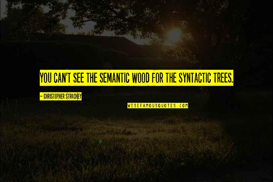 Can't You See Quotes By Christopher Strachey: You can't see the semantic wood for the