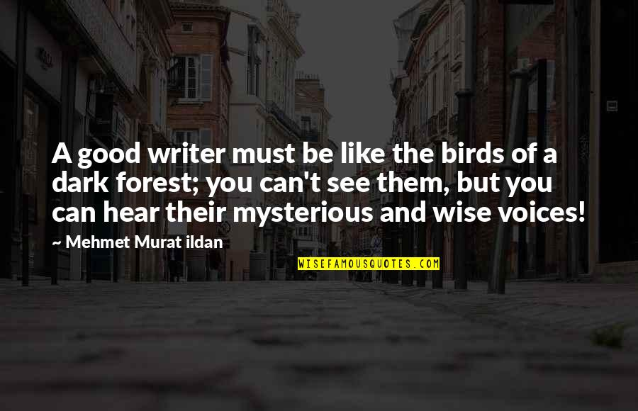 Can't You See Quotes By Mehmet Murat Ildan: A good writer must be like the birds