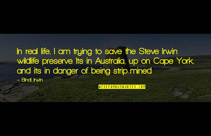 Cape Quotes By Bindi Irwin: In real life, I am trying to save