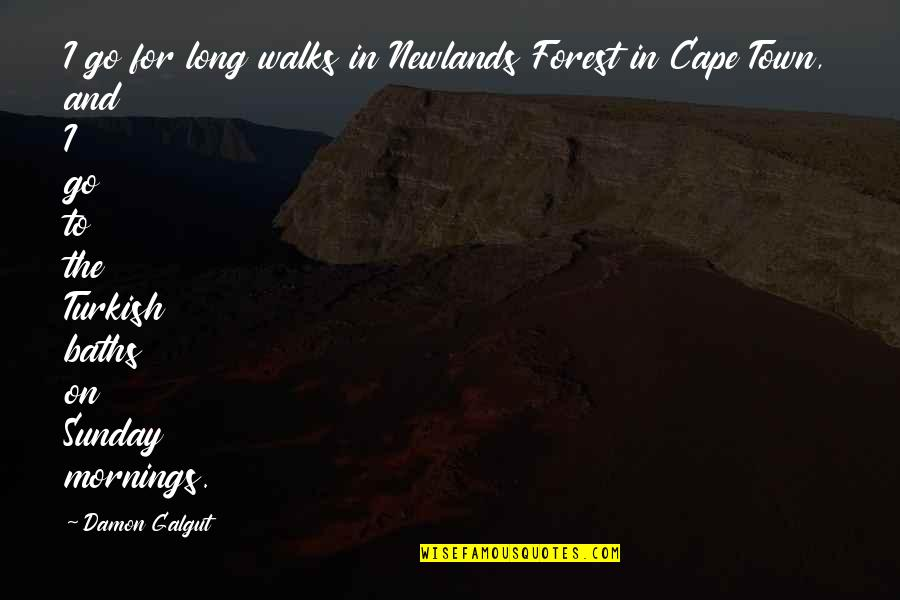 Cape Quotes By Damon Galgut: I go for long walks in Newlands Forest