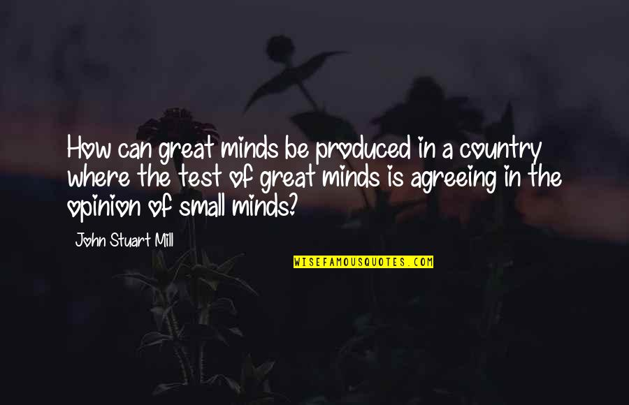 Car Hire Cape Town Quotes By John Stuart Mill: How can great minds be produced in a