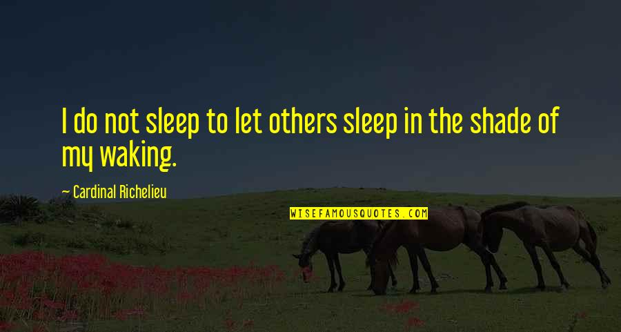 Cardinal Quotes By Cardinal Richelieu: I do not sleep to let others sleep