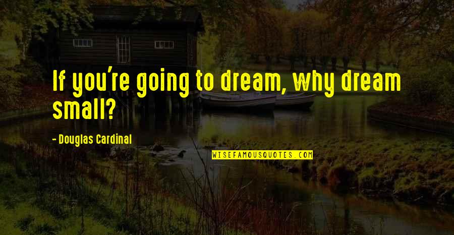 Cardinal Quotes By Douglas Cardinal: If you're going to dream, why dream small?