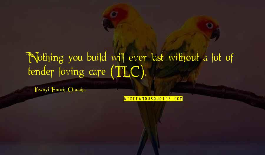 Care A Lot Quotes By Ifeanyi Enoch Onuoha: Nothing you build will ever last without a