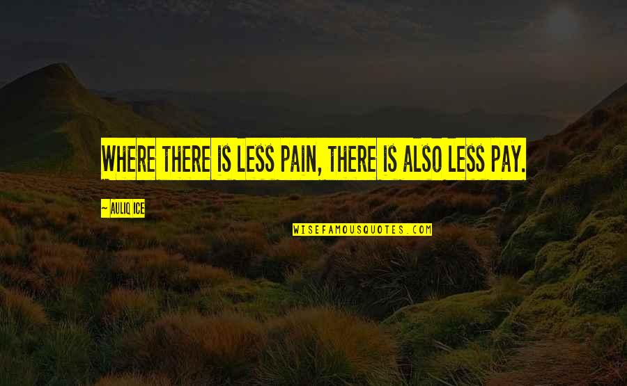 Careers Quotes By Auliq Ice: Where there is less pain, there is also