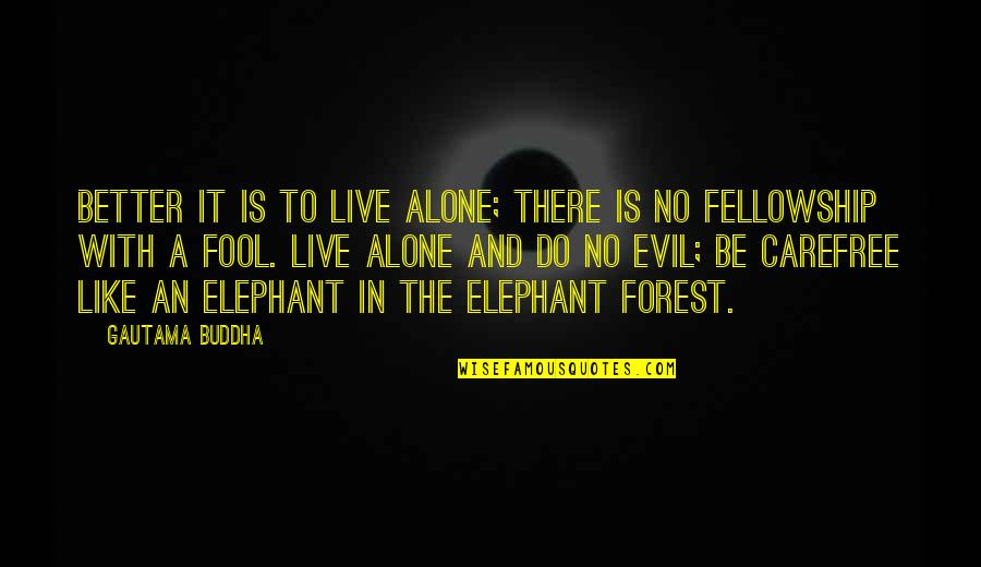 Carefree Quotes By Gautama Buddha: Better it is to live alone; there is