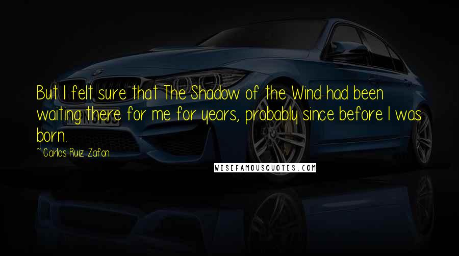 Carlos Ruiz Zafon quotes: But I felt sure that The Shadow of the Wind had been waiting there for me for years, probably since before I was born.