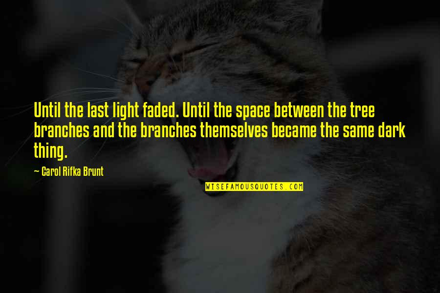 Carol Rifka Brunt Quotes By Carol Rifka Brunt: Until the last light faded. Until the space