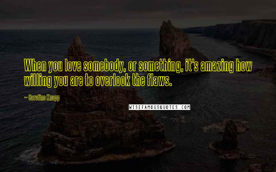 Caroline Knapp quotes: When you love somebody, or something, it's amazing how willing you are to overlook the flaws.