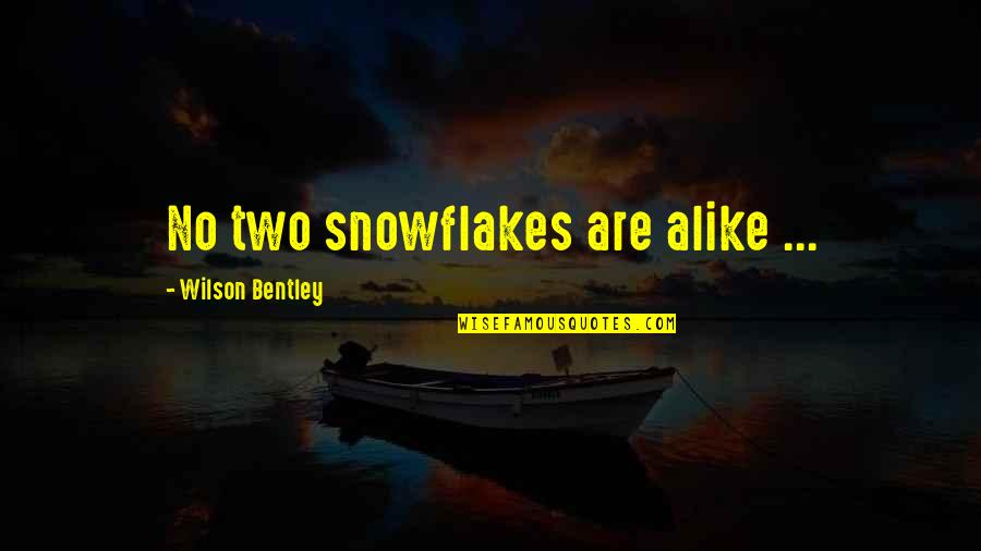 Carts Quotes By Wilson Bentley: No two snowflakes are alike ...